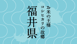 福井県紹介